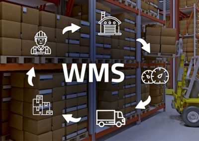 WMS Software Selection & Implementation White Paper